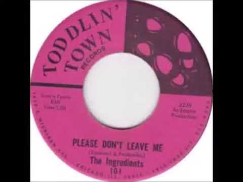 The Ingredients -  Please Don't Leave Me{1967}