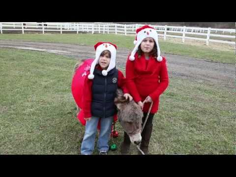 GFK-(GFELLA'S KIDS) DOMINICK THE DONKEY REMAKE 2011
