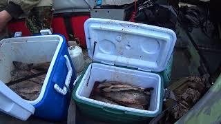 Удачный денек на рыбалке в Сибири !!!