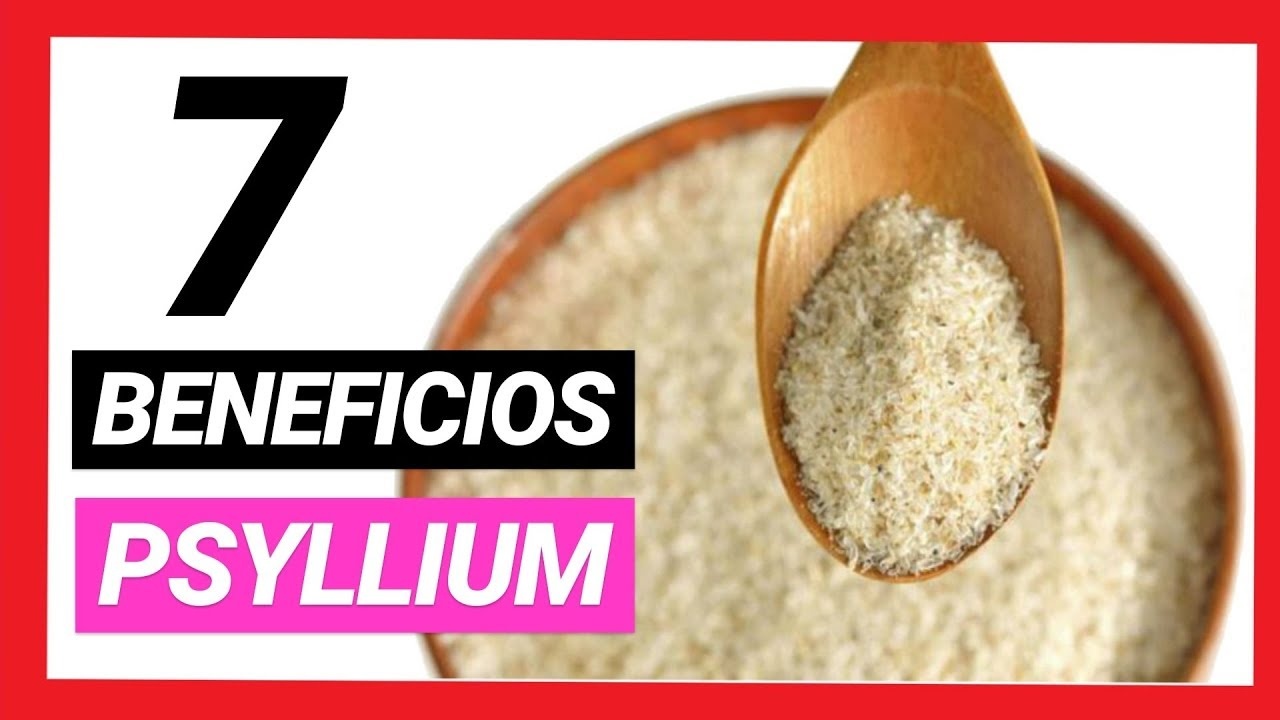 plantago psyllium sirve para adelgazar