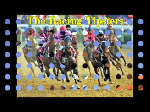 Horse Racing Results For Today