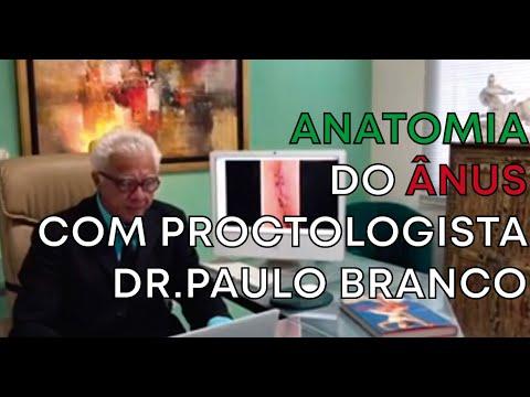 Anatomia do anus na visão do proctologista e as doenças.
