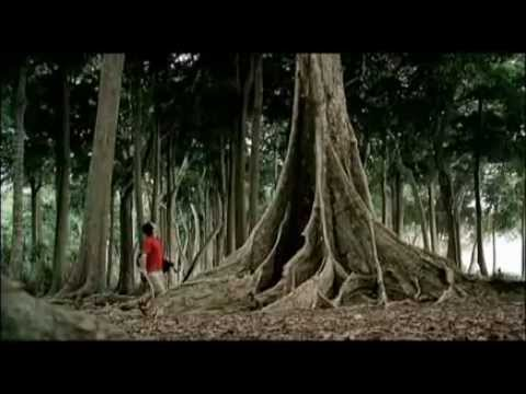 Incredible India Commercial