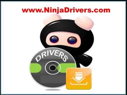 Nvidia geforce 310m driver download for windows 7 32 bit.