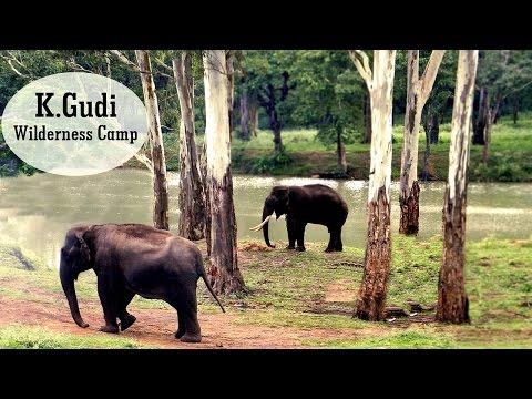 K.Gudi Wilderness Camp - Jungle Lodges and Resorts| B R Tiger Reserve | India Ghoomo