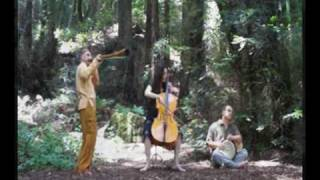 Didgeridoo, Cello and Drums Improvisation