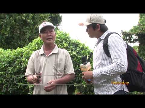 Vietoday TV - Một thoáng quê hương 60 - Vua Kieng Thu