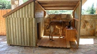Steps To Build An Insulated Dog House For Pit Bulls, Labradors, German Shepherds