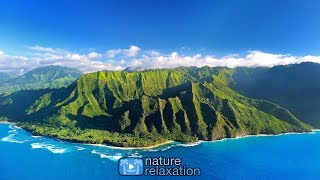 Relax in Paradise 🌴+ Healing MusicTropical  24/7 Live Stream by Nature Relaxation™ Films (HD 1080p)
