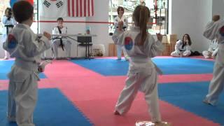 Taekwon-do Yellow Stripe Belt Test
