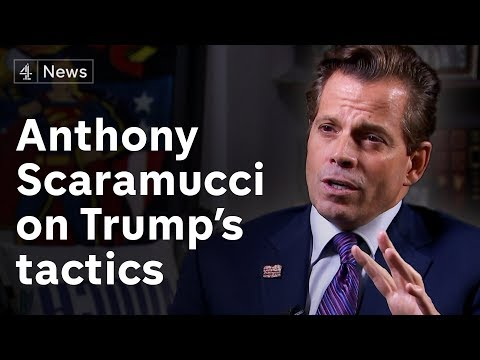 Anthony Scaramucci interview on Trump, immigration and the midterm elections