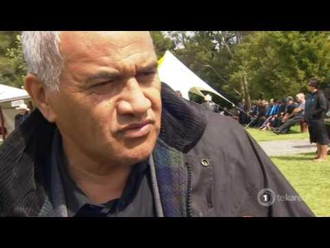 Rahui Papa receives endorsement from Kīngitanga to stand for Māori Party