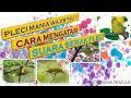 Menyembuhkan Pleci Serak  Mp3 - Mp4 Download