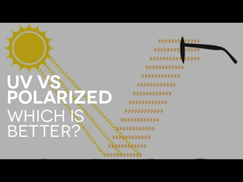 What Are The Differences Between Uv And Polarized Sunglasses Q A