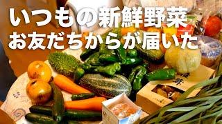 【Vlog】いつもの新鮮野菜が届いた Fuji X100S…