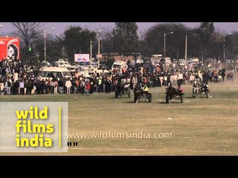 Horse cart race in Punjab : slow motion spectacle