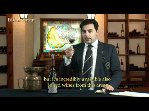 Ronchedone 2009 Vino Rosso, Ca' dei Frati - Videodegustazione (Online wine tasting)