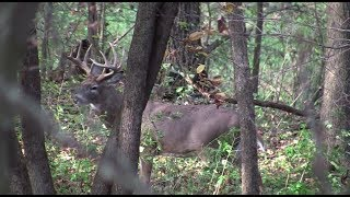 Wired To Hunt 2013 - Episode #3: Anything Is Possible