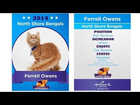 Thumbnail for Cat Video Kitten Bowl I - Ferrell Owens - Player Profiles