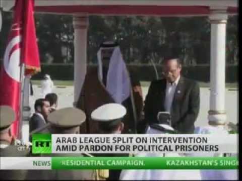 SYRIA, AMNESTY & ANGER: Arab League split on intervention