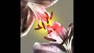 Cor Fuhler & Gert-Jan Prins - Tulip Creek (The Flirts, 2001)