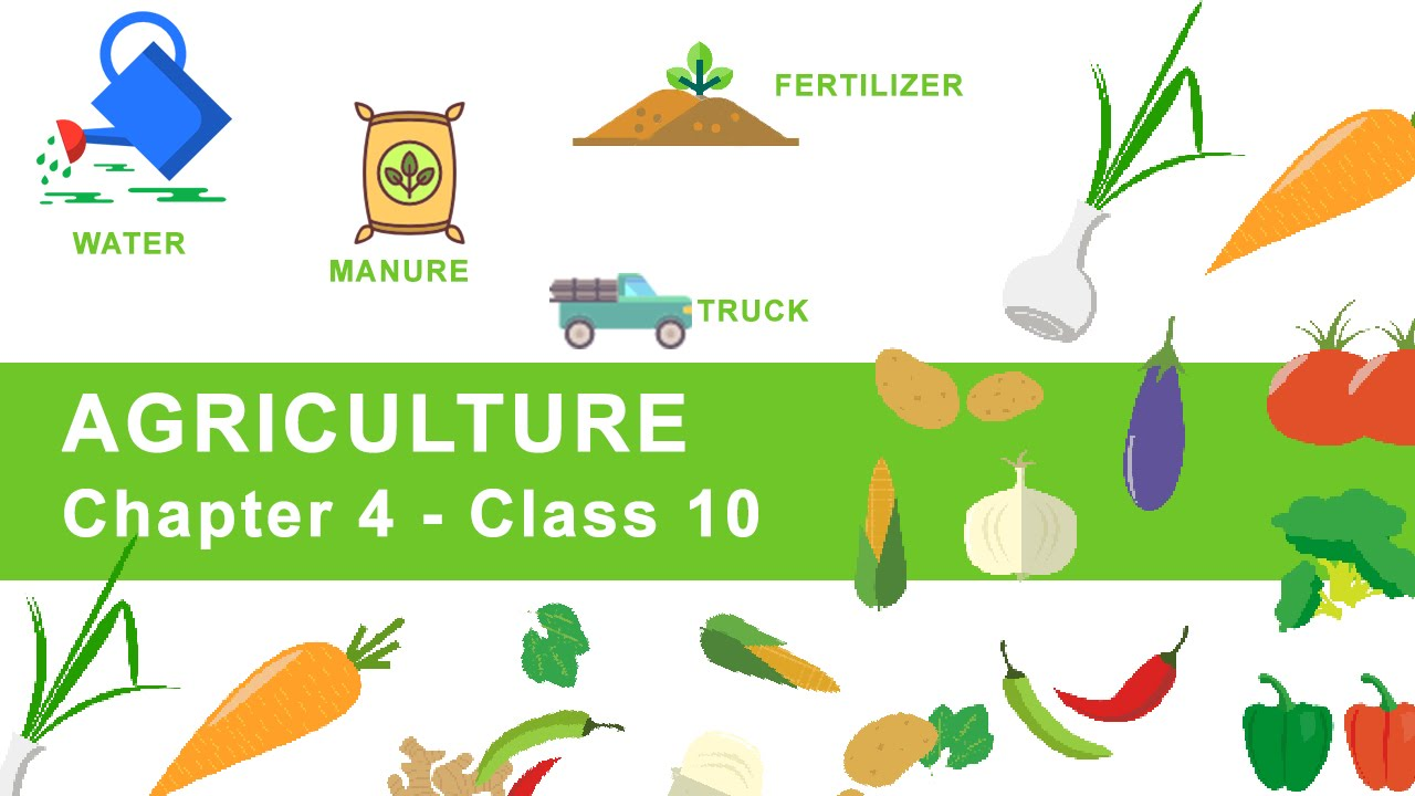 Agriculture 10 class