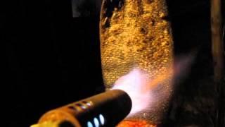 Как быстро почистить бобровый хвост