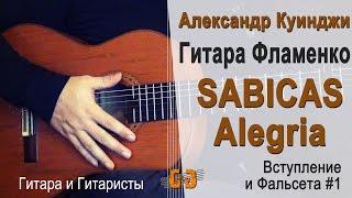 Испанская гитара фламенко. Sabicas  Alegria. #1. (Не Дидюля)