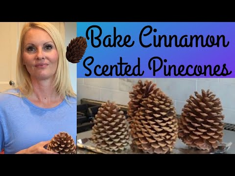 Bake PINECONES Cinnamon scented pine cones - kill bugs before CRAFTS with MOODY BLOOMS