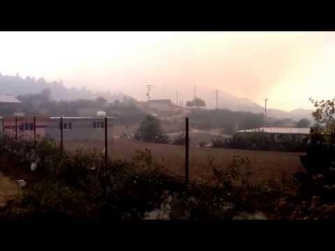 Incendio forestal en Mineral Del Monte