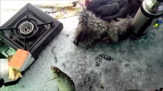 как поймать леща белоярское водохранилище