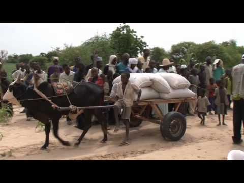 On the Brink: Hunger in the Sahel