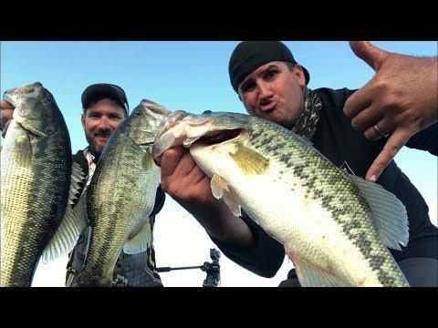 Glide Baits On Mountain Lakes Ft. Josh Parris!