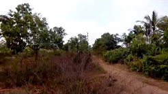 3 lakhs per acre total 4 Acres of agricultural farmland in Mandya district maddur taluk with good wa