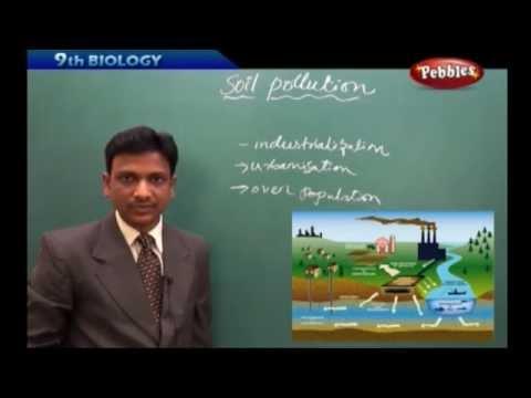Soil Pollution- Class 9th AP & TS State Board Syllabus Biology