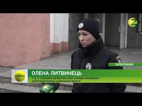 Телеканал Z: Новини Z - У Запоріжжі хтось навмисне вбиває тварин - 16.03.2018