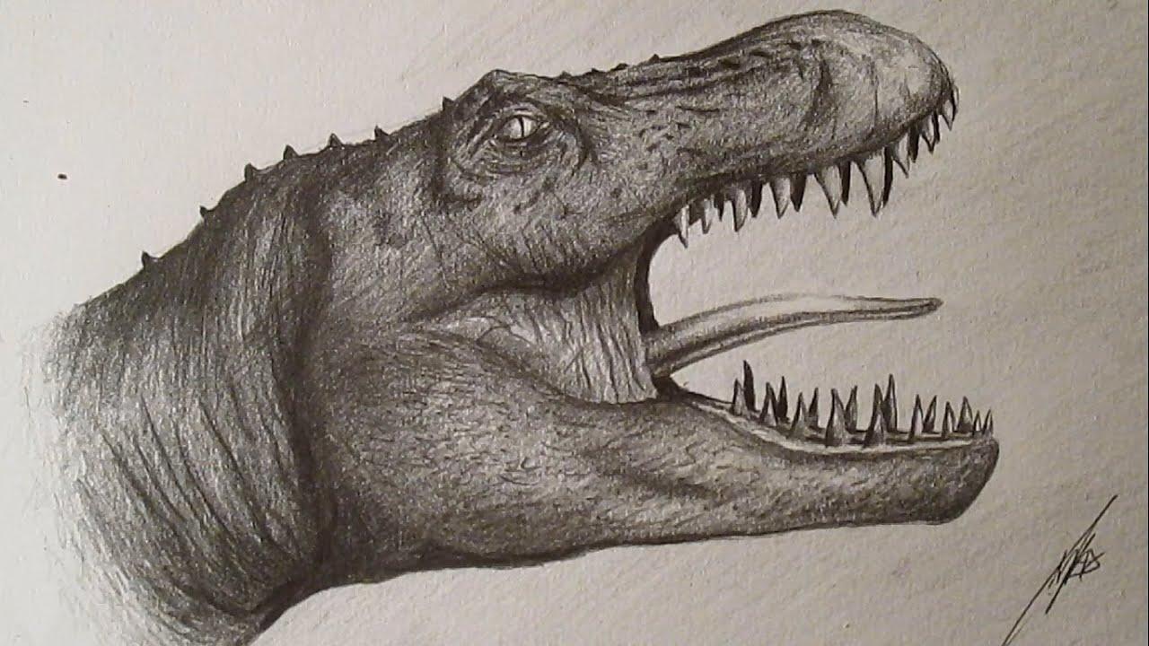 how to draw tyrannosaurus rex cómo dibujar un tiranosaurio rex a