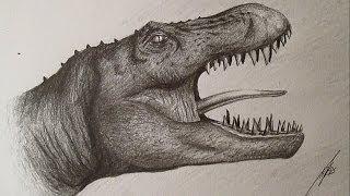 How to Draw Tyrannosaurus Rex / Cómo dibujar un Tiranosaurio Rex a lápiz HD