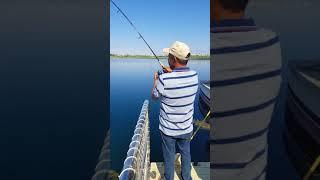 birecik alabalik avi