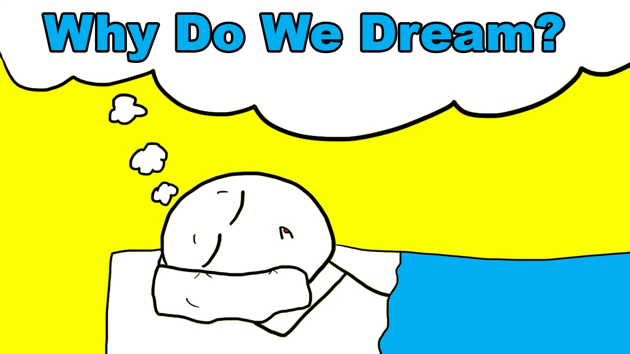 Why Do We Dream?  Youtube. December 7th Signs. Sine Signs Of Stroke. Football Championship Signs. Censored Signs. Front Office Signs Of Stroke. Playoff Signs. Breeding Pigeon Signs Of Stroke. Yard Sale Signs Of Stroke