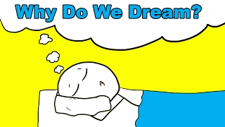 Why Do We Dream? streaming
