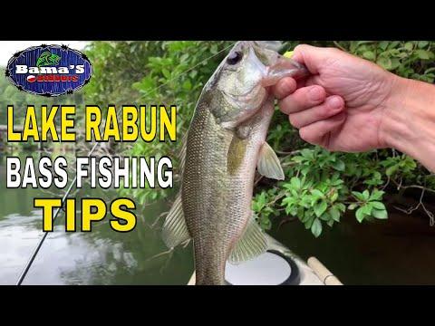 LAKE RABUN FISHING TIPS AND TECHNIQUES FOR BASS
