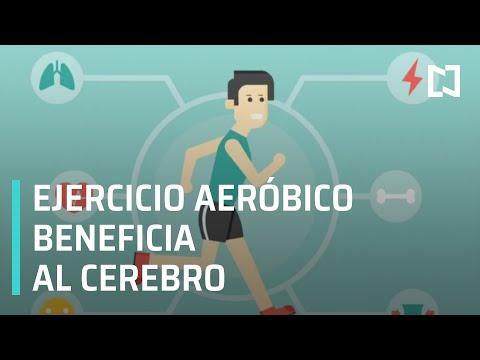 Ejercicio aeróbico impacta positivamente la función cognitiva - A Las Tres