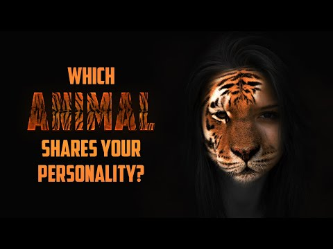 Which Animal Shares Your Personality?