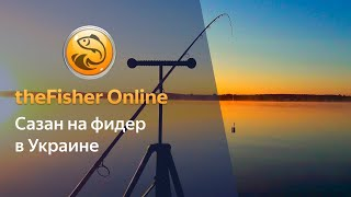 6 TheFisher Online стрим Ловля сазана на фидер в Украине
