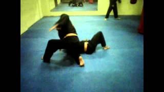 Video Treino de hapkido download MP3, 3GP, MP4, WEBM, AVI, FLV November 2018