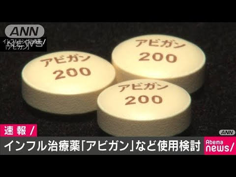 新型 コロナ ウィルス 治療 薬