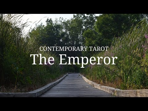 The Emperor in 5 Minutes