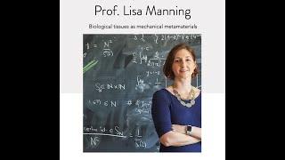 NSCS Online Seminar - Prof. Lisa Manning