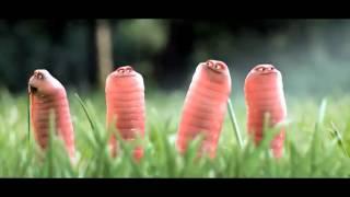 Phim | Những chú sâu vui nhộn | Nhung chu sau vui nhon